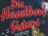 haseldorf-flyer